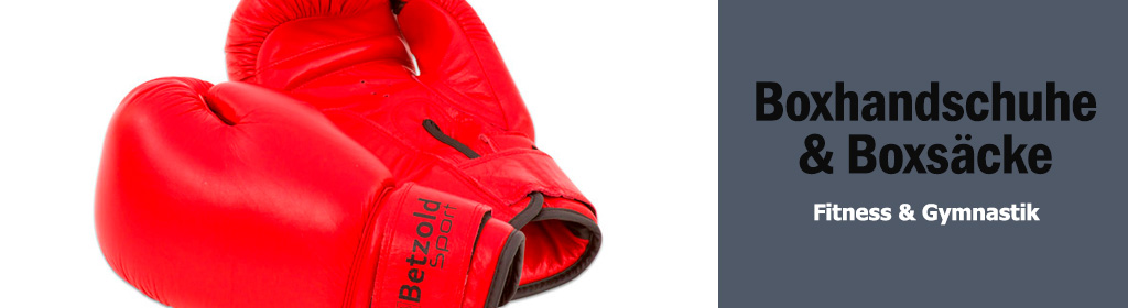 Boxhandschuhe & Boxsäcke Banner