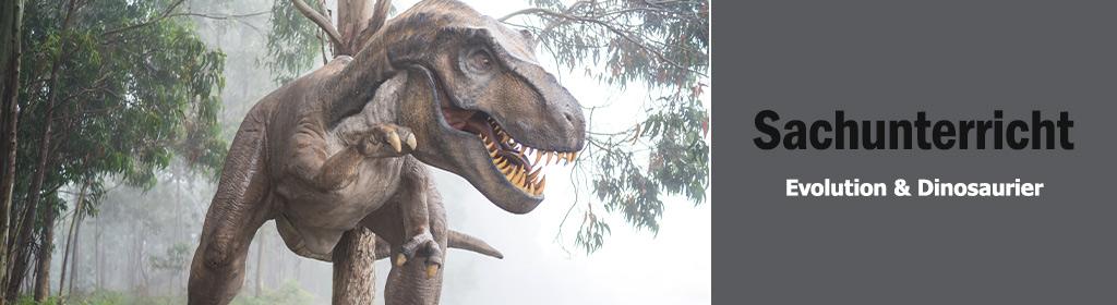 Evolution & Dinosaurier Banner