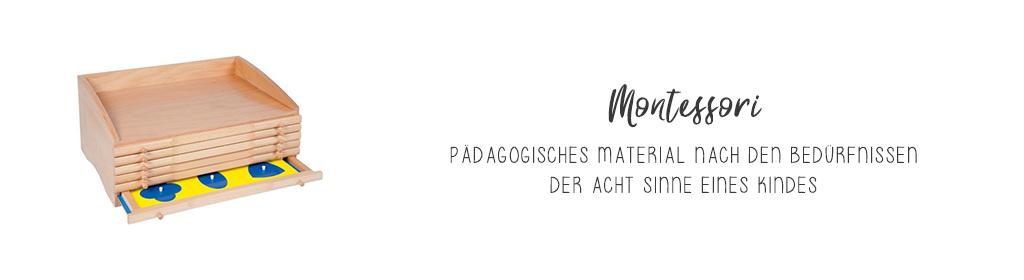 Montessori Banner