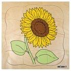 Lagenpuzzle Sonnenblume, ab 4 Jahre