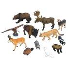 Tierfiguren - Nordamerikanische Tiere, 12 Teile, 2-7 Jahre