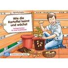 Kamishibai Bildkartenset - Wie die Kartoffel keimt und wächst, 4-8 Jahre