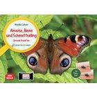 Ameise, Biene und Schmetterling. Unsere Insekten. Kamishibai Bildkarten und Memo-Spiel ab 3 Jahre