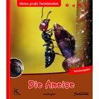 Die Ameise, Buch, 1.-4. Klasse