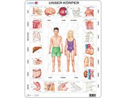 Larsen Lernpuzzle Unser Körper