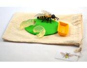 DIY-Kit Lebenszyklus Biene, nur Modell