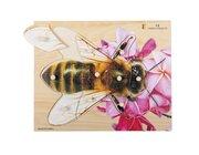 Holz-Puzzle Biene, ab 2 Jahre