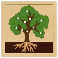 Botanisches Puzzle: Baum, ab 4 Jahre