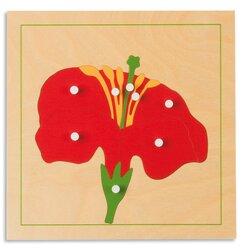 Botanisches Puzzle: Blüte