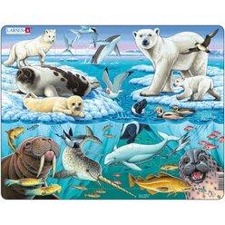 Larsen Lernpuzzle Tiere der Arktis