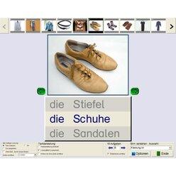 Sprachkompetenz (Einzellizenz), Lern-CD-ROM