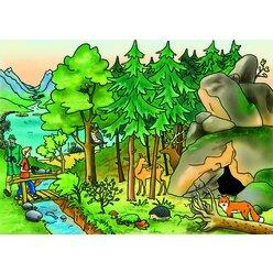 Vocabular Wortschatz-Bilder - Tiere, Pflanzen, Natur  Kopiervorlagen zur Bilderbox