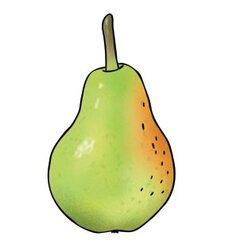 Vocabular Wortschatz-Bilder - Obst, Gemüse, Lebensmittel, Bilderbox, 3-99 Jahre