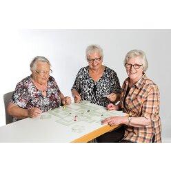 NEUROvitalis Stadtplanspiel
