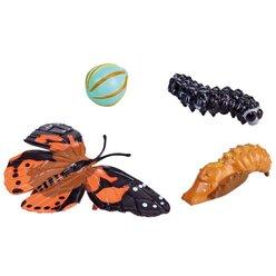 Von der Larve zum Schmetterling, 4 Lebenszyklus-Figuren, 6-12 Jahre