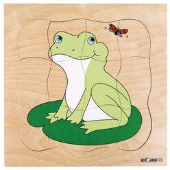 Wachstumspuzzles - Frosch