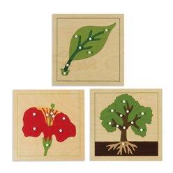 Botanische Puzzles, ab 3 Jahre