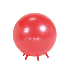Gymnic Sit'n'Gym 55 BRQ rot, 55 cm