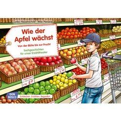 Kamishibai Bildkartenset - Wie der Apfel wächst. Von der Blüte bis zur Frucht Bildkartenset