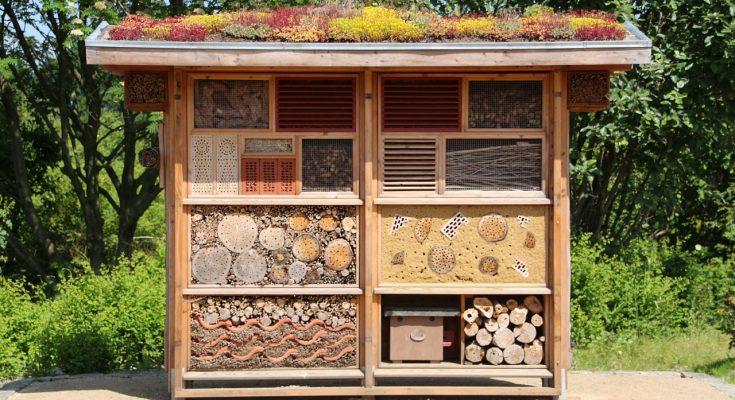 Ein selbstgebautes Insektenhotel